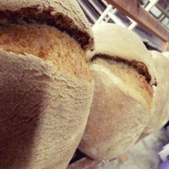 Ekşi Mayalı Tam Buğday Ekmeği