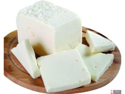 Organik Peynir Nedir?